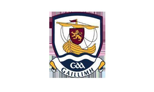 Kildare gaa logo